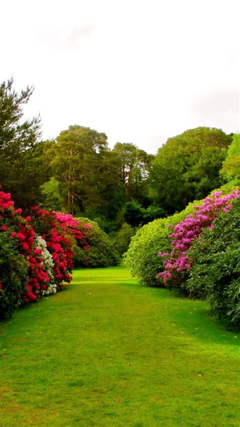 imagenes regando jardines imagenes paisajes y consejos para el jard 237 n