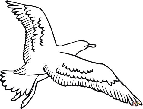 Seagull Coloring Page seagull is flying coloring page free printable coloring