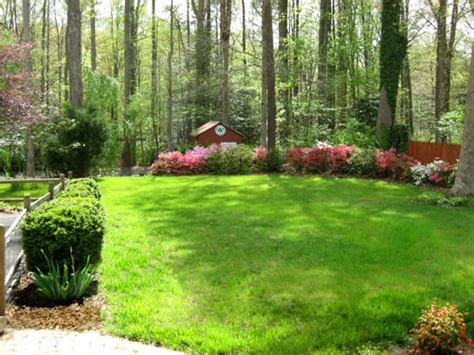 large backyard landscaping ideas what we look for look past while house hunting young