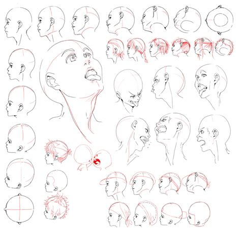 how to draw heads at different angles resources 2 by deejuusan on deviantart
