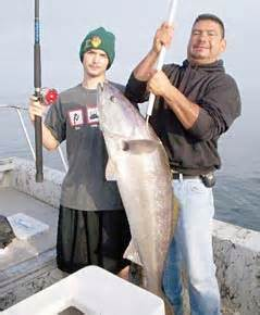 Jacob Mfn white seabass catch at san quintin rains wash out