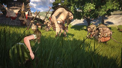 black desert online indonesia black desert online new e3 2013 screens