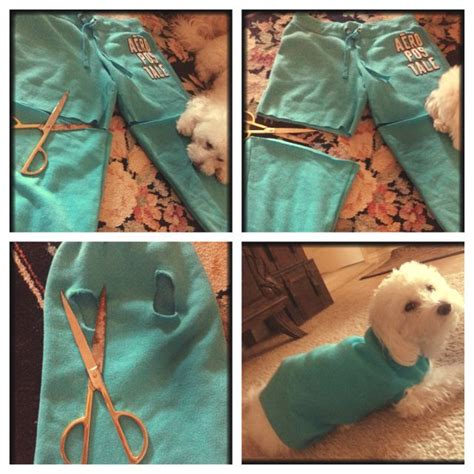 diy pet stuff 261 best images about stuff out of clothes on