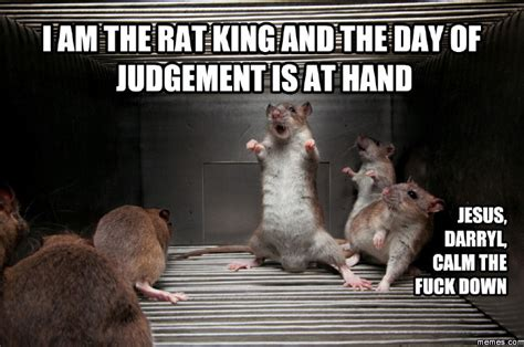 Rat Meme - i am the rat king gotta love rats pinterest rat king