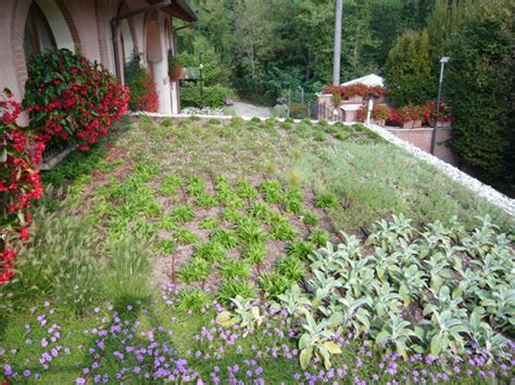giardino pensile costo giardino pensile presso parolo srl epigea