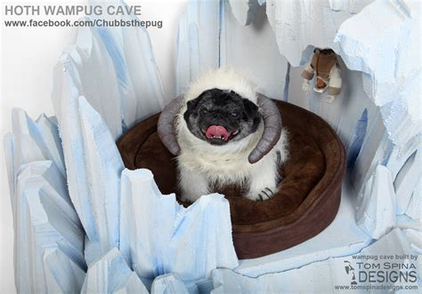 star wars dog bed frozen ice cave custom dog bed for chubbs the wug tom