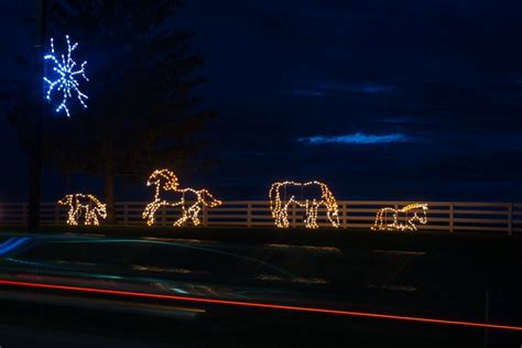tis the season for holiday festivals and kentucky horse