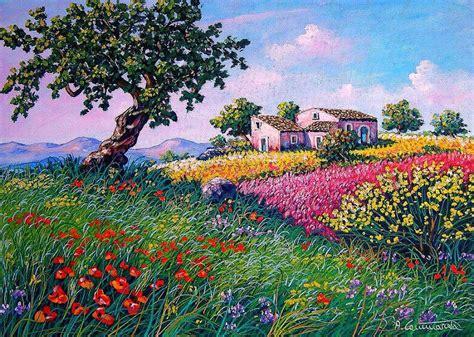 immagini paesaggi fioriti ginestra fiorita antonino cammarata opera celeste network