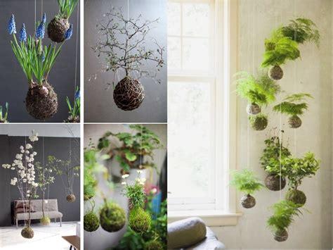 decoracion de plantas 10 ideas de decoraci 243 n con plantas colgantes