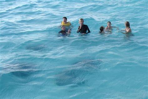 cockatoo catamaran grand cayman caribbean cruise 2006 georgetown grand cayman