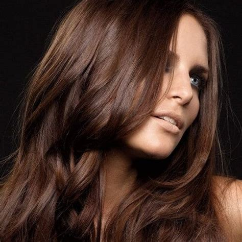 coloring hair brown best 25 chocolate brown hair color ideas on chocolate hair chocolate brown hair