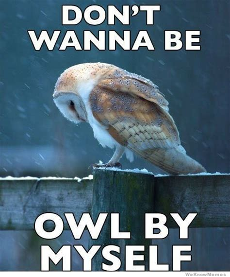 Dont Be Sad Meme - owl by myself weknowmemes