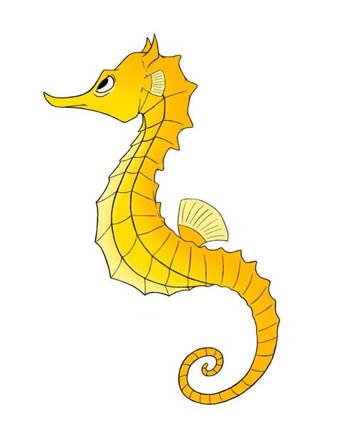 seahorse clip seahorse clipart yellow seahorse pencil and in color