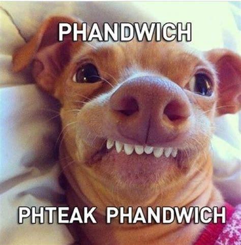 Lisp Meme - 89 best images about lisp meme dog on pinterest 4th