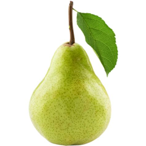 12 best images about pear onyx our business perishable