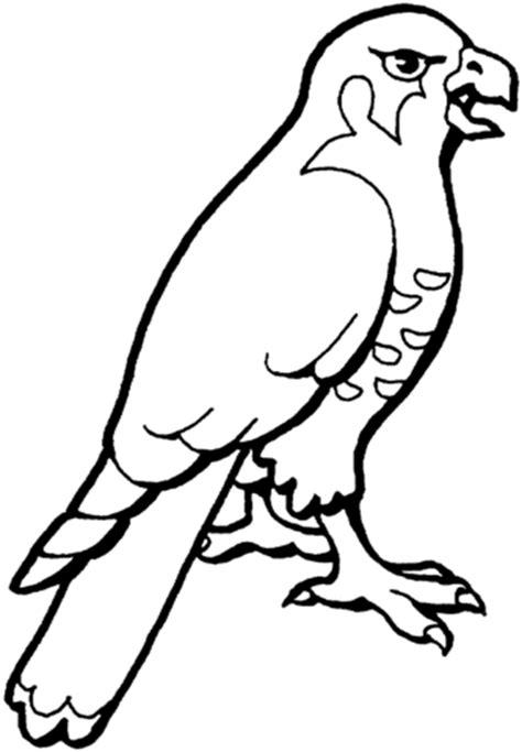 que empiecen con i colouring pages disegno di un falco da colorare disegni da colorare e