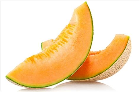 is cantaloupe for dogs 10 best fruits and vegetables for dogs pawculture