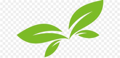 leaf logo euclidean vector green leaf vector logo design