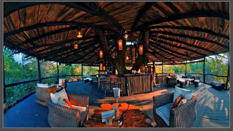 best tree houses interior best tree houses best house design best tree houses in the world