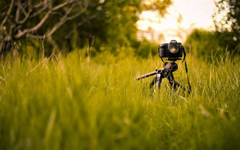 photographer with camera wallpaper hd photography camera free download hd wallpapers 5202