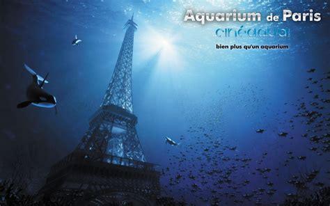 d 233 couverte l aquarium de cin 233 aqua