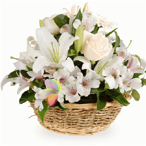 cesti di fiori cesto delicato spediamo fiori dolci e regali a domicilio