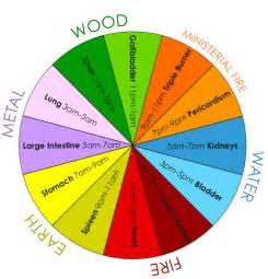 color cycle tcm 24 hour organ qi cycle