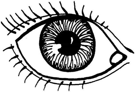 Printable Eyes To Color | eye coloring pages printable coloring coloring pages