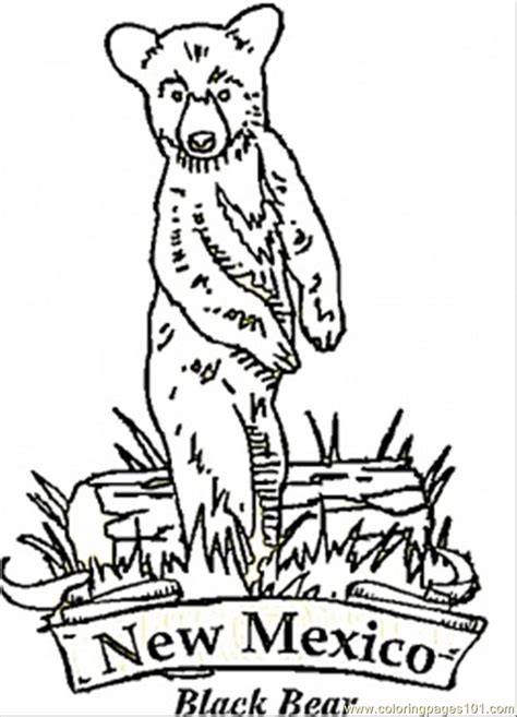 coloring pages new mexico bear countries gt usa free