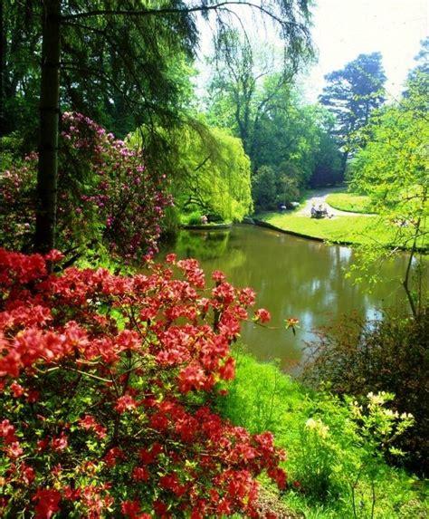 Awesome Japanese Garden Bridge #7: Clyne_gardens_swansea_original.jpg