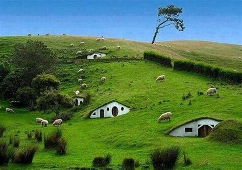 new zealand hobbit houses hobbit houses new zealand places to go pinterest