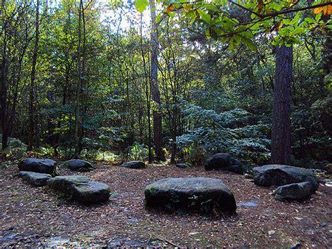 Baum Mit Steinen Umranden by Alderley Edge