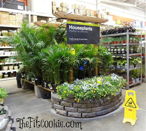 earth day inspired diy projects   home depot