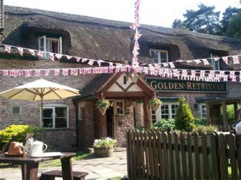 golden retriever pub bracknell william twigg bracknell whatpub