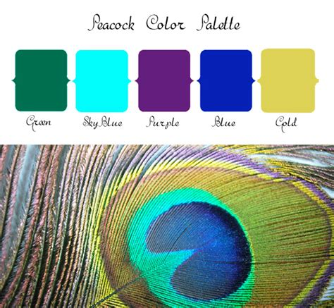 How To Choose Paint Colors by Peacock Wedding Color Palette