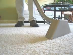 Borax Carpet Borax To Clean Carpet