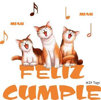 imagenes de gatos que digan feliz cumpleaños gatos cant 225 ndote la canci 243 n de feliz cumplea 241 os happy