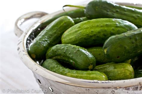 pickles the spicy crunchy dill pickles pixelated crumb