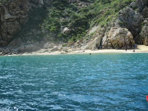 glass bottom boat tours california sea lions picture of glass bottom boat tour cabo san