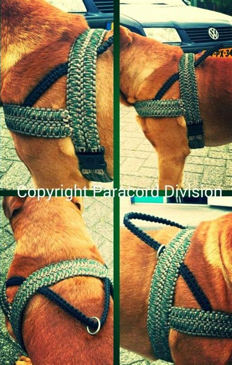 paracord harness 976 best paracord images on