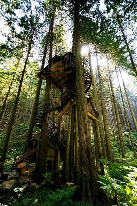 tree houses around the world dream like a child 10 fantasy treehouses around the world