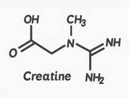 creatine hydrochloride gnc creatine all you need to the scrutinizer