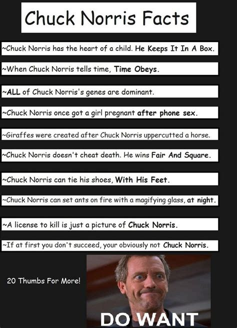 chuck norris best facts 41 best images about chuck norris the facts on