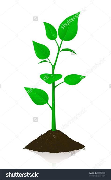 and clipart small tree clipart 101 clip