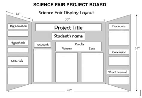 Poster Board Layout For Science Fair Project | poster board project layout school projects pinterest