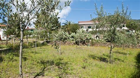isola elba appartamenti sul mare appartamenti sul mare all isola d elba residence augusto