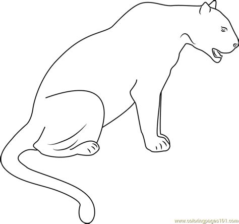 panther black seet coloring page free panther coloring