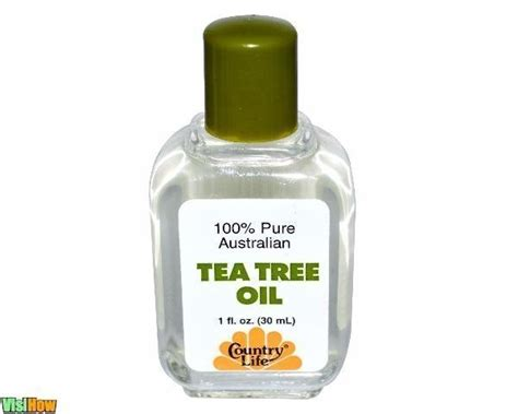 tea tree oil for bed bugs tea tree oil for bed bugs 28 images does tea tree oil