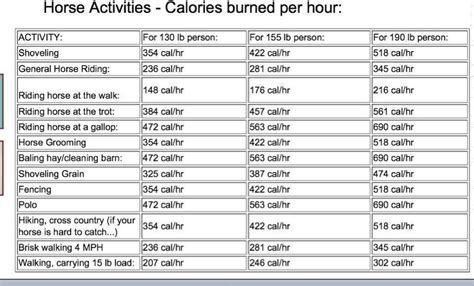 how many calories do i burn bench pressing calories burned by equestrian activities equine ink