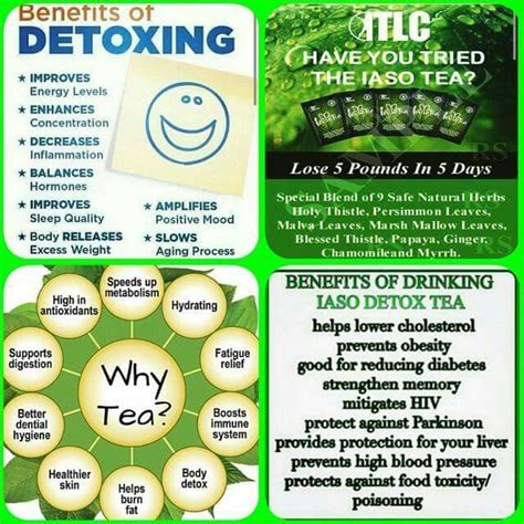 Iaso Tea Detox Plan by 64 Best Images About I Lost 5 In 5 Days On
